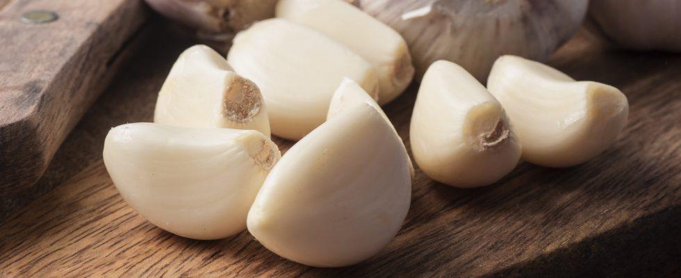 Raffreddore? Su TikTok il rimedio è l'aglio… nel naso