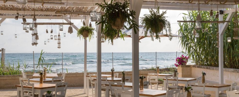 Mangiare in hotel: Canne Bianche a Torre Canne, tra Bari e Brindisi