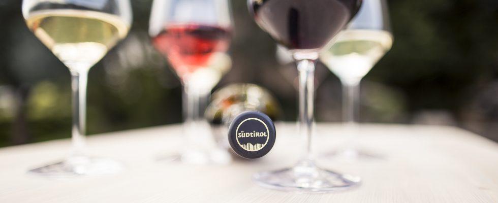 Alto Adige: 6 vini dell'annata 2020 da bere subito (o conservare in cantina)