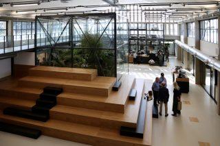 A Firenze l'Accademia del Caffè Espresso possiede una piantagione indoor