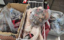 Bari: maxi sequestro di pesce in Centro