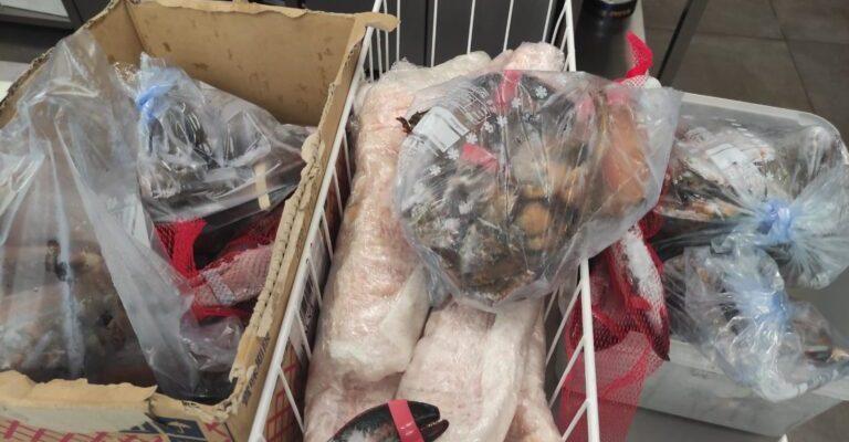 Bari: oltre una tonnellata di pesce sequestrato