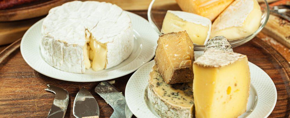 I 15 formaggi più puzzolenti del mondo