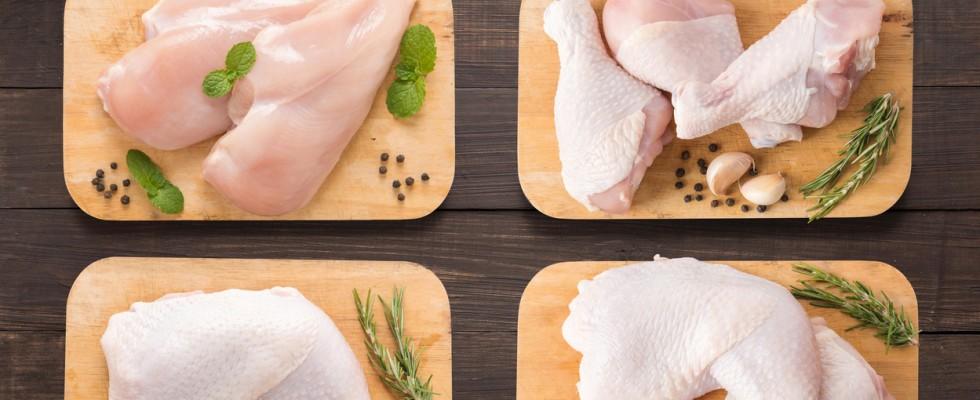 Che differenza c'è tra la carne di pollo e di tacchino?
