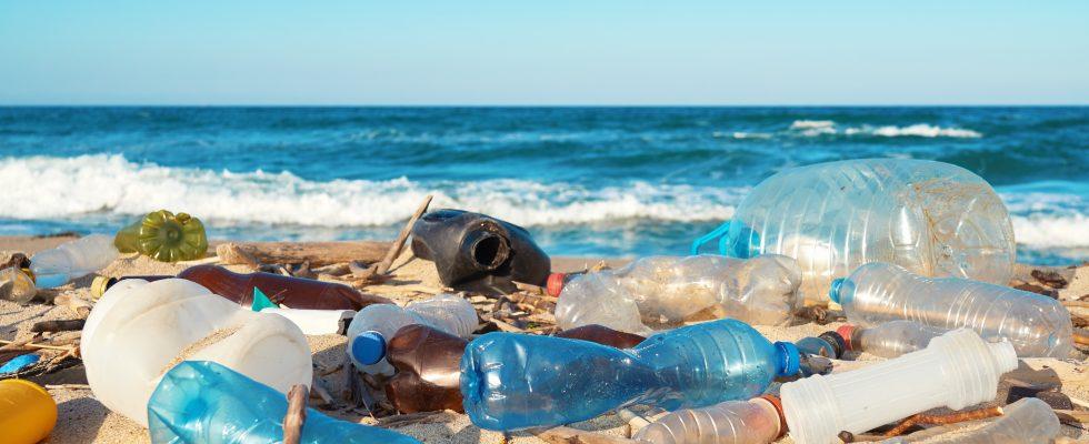 Plastica monouso vietata in Europa: ecco cosa cambia