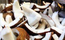 10 super ricette con il cocco
