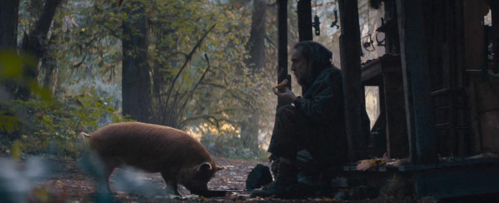 Pig : il nuovo film di Nicolas Cage su un maiale da tartufo