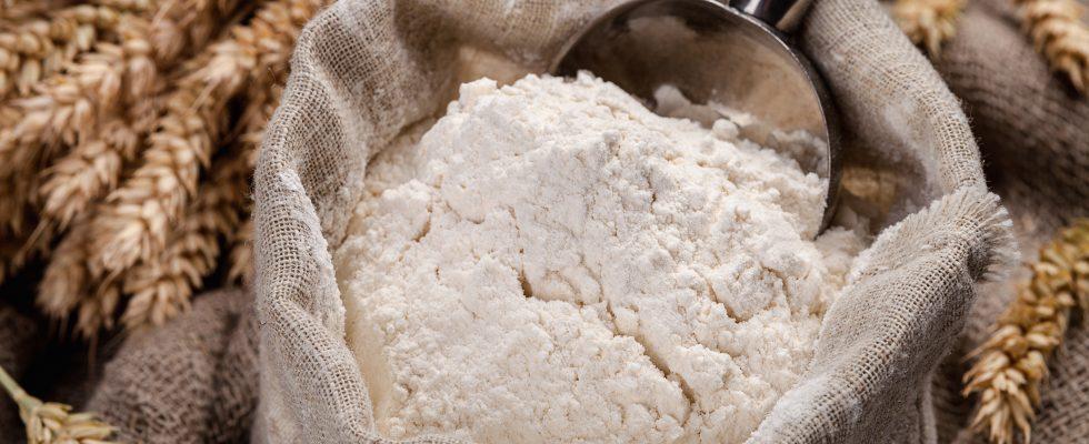 15 farine insolite da utilizzare in cucina