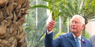 Il Principe Carlo e Jamie Oliver contro lo spreco alimentare