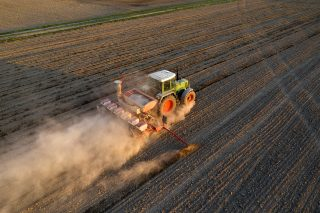 Siccità e caldo estremo influiscono sui raccolti